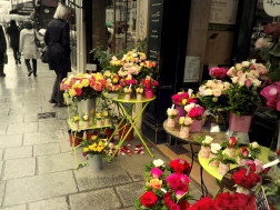 A Parisian street with flowers added to the bargain made this view a wonderful, if unexpected, view.